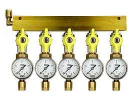 Manifold 5 pipes, shut-off valves, gauge till 4bar, CF8/6