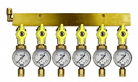 Manifold 6 pipes, shut-off valves, gauge till 16bar, CF8/6