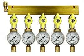 Manifold 5 pipes, shut-off valves, gauge till 25bar, CF8/6