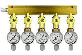 Manifold 5 pipes, shut-off valves, gauge till 25bar, FU6/4