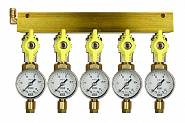 Manifold 5 pipes, shut-off valves, gauge till 25bar, CF6/4